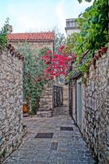 Unforgettable vacation in Montenegro