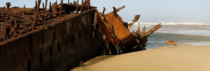 rusting wreck of the Maheno at Fraser Island, Australia