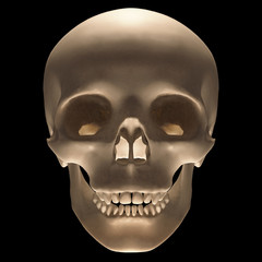 Skull with clipping path included.