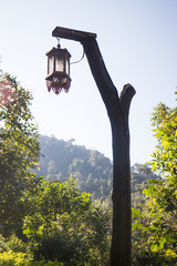 Hanging old street lamp in the garden