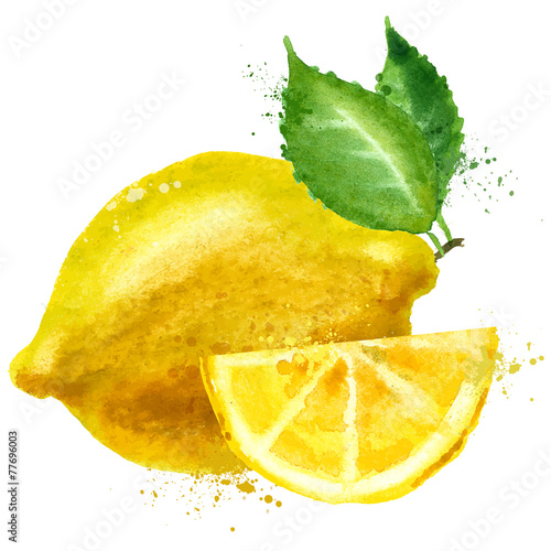 lemon vector logo design template. fruit or food icon.