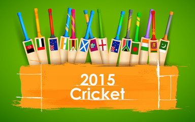 Cricket bat of different participating countries
