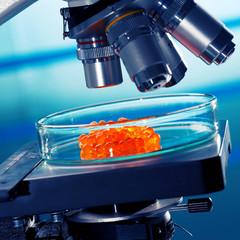 laboratory of food quality tests caviar