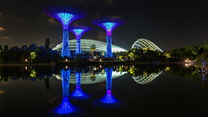 night light singapore garden 4k time lapse from the bay
