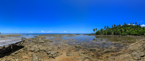 Boipeba - plage de Moreré - Mangrove - Corail