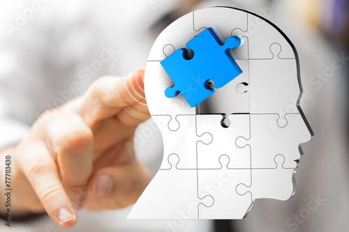 puzzle - 77703430