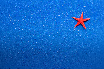 Wet surface with starfish