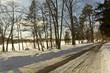 Park Fence Snowy