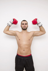 Boxer on white background with gloves in the air, winner