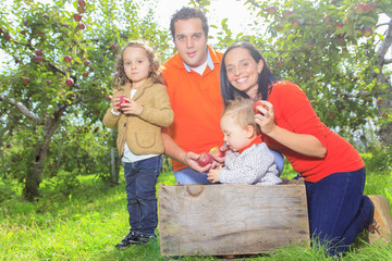 A happy family of four attractive caucasian catch apple on a