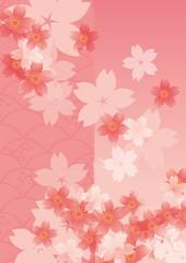 umi_ume_pattern_pink_sakura
