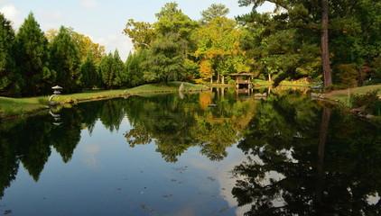 Reflection Pond, Japanese Garden