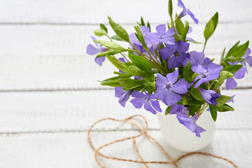 Spring bouquet of periwinkle in the jar on boards