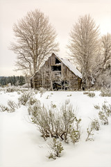 Placerville IDaho rustic Cabin