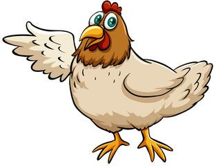 A fat hen