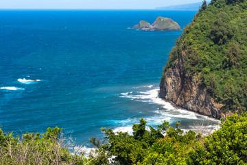 The coast along North Kohala, Hawaii
