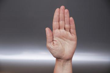 palmo della mano