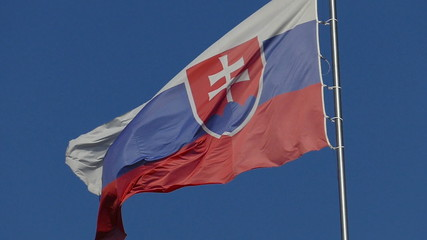 Slow motion of slovakian flag waving in the wind