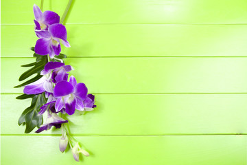 purple orchid and  leaves