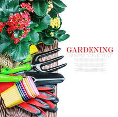 Gardening tools on a white background isolated