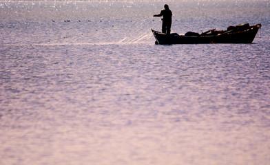 ağ açan balıkçı