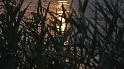 tramonto mare video ripresa sole al tramonto