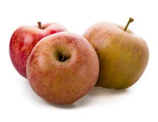 Apfel Sorte Boskoop