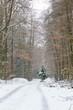 canvas print picture - Winterwanderung