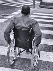 Man in wheelchair crossing a zebra