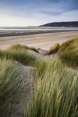 Summer evening landscape view over grassy sand dunes on beach