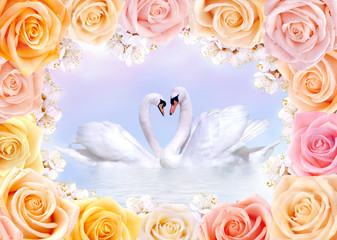 Swans in love framed by roses and cherry flowers
