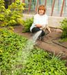 Woman watering garden beds