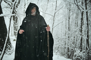 Old wizard in white forest