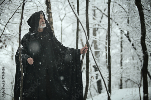 Poster Old wise man in dark forest