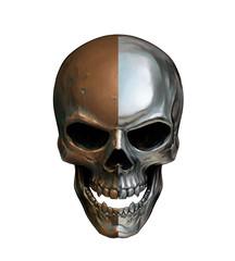 Chrome copper skull