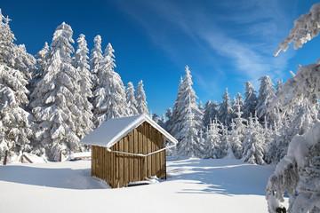 Holzhütte im Winterwald