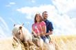 Paar reitet auf Pferd in Sommer Wiese