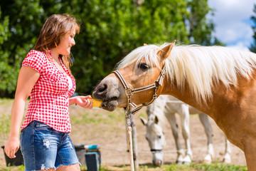 Frau füttert Pferd auf Ponyhof