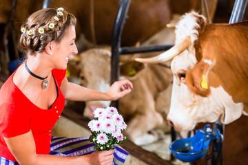 Bäuerin streichelt Kuh im Kuhstall