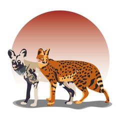 wild dog serval illustration