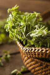 Raw Green Organic Oregano