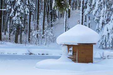 cabane de l'étang gelé