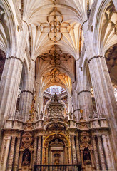 Stone Columns Statues New Salamanca Cathedral Spain