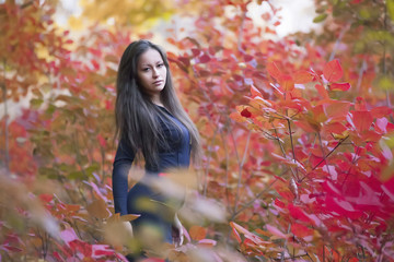 Very beautiful girl in red leaves