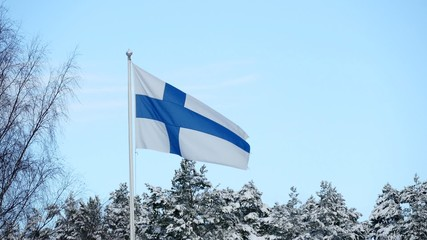 Flag Of Finland Waving On sky Background
