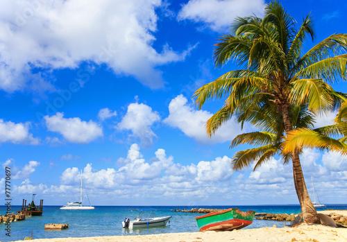 Caribbean beach in Dominican Republic - 77770697