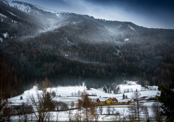 snowstorm over Austrian Alps grown with forest