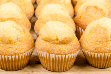 Rows of muffins