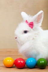 Cute bunny with colorful easter eggs
