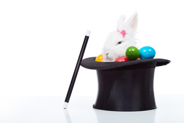 Cute white rabbit with colorful easter eggs in magician hat